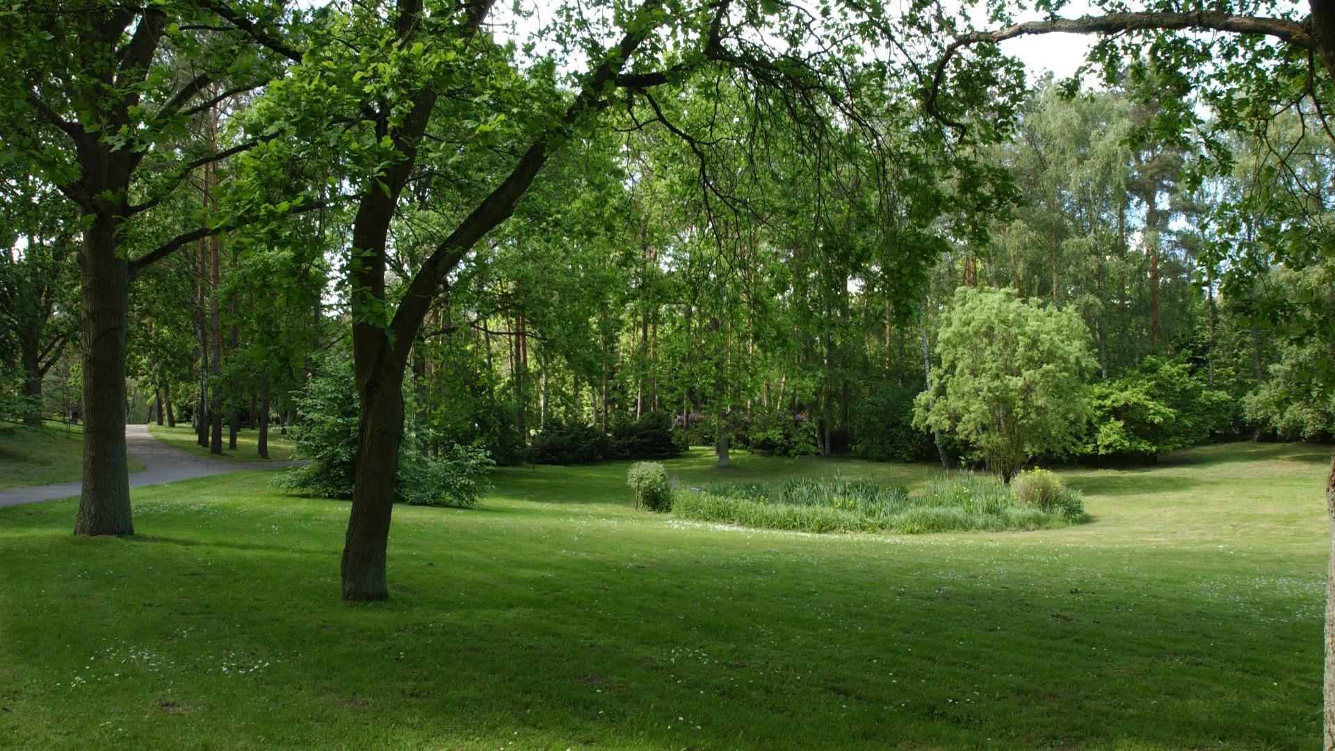 Waldfriedhof Schwerin Streuwiese